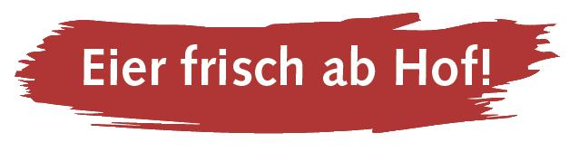 Logo Valpix GmbH